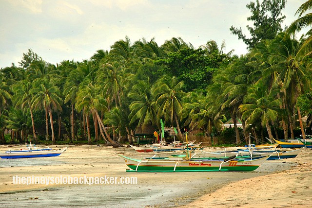 Aklan: Jawili Falls and Beach Travel Guide
