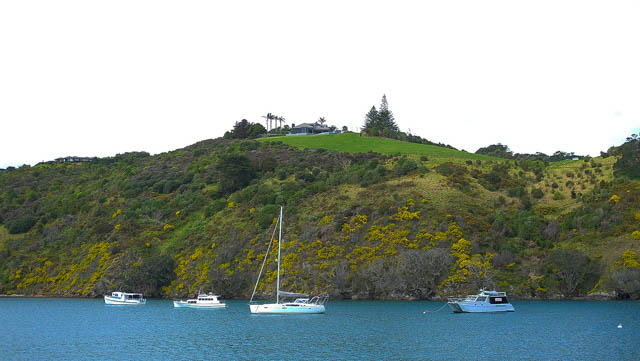WAIHEKE ISLAND TRAVEL GUIDE