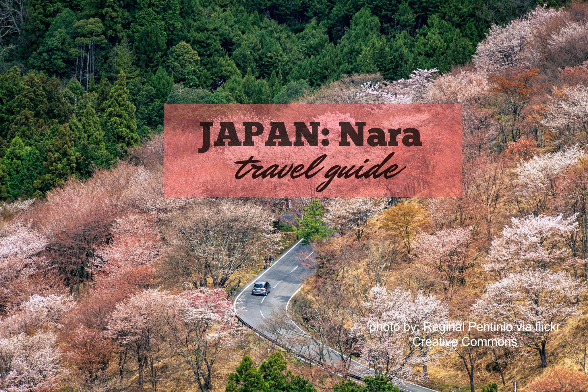 NARA TRAVEL GUIDE (Budget + Itinerary) 2019