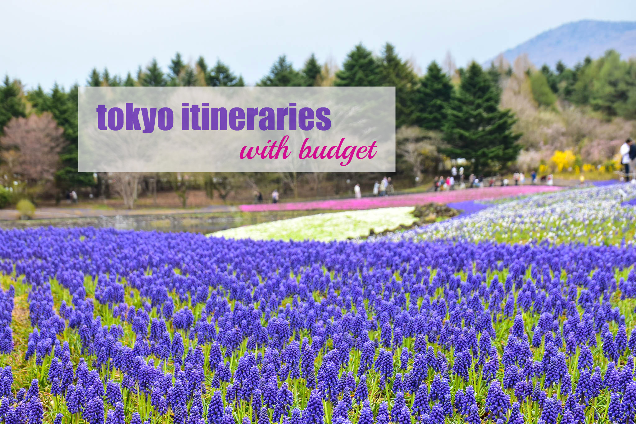 TOKYO ITINERARIES (with Budget)